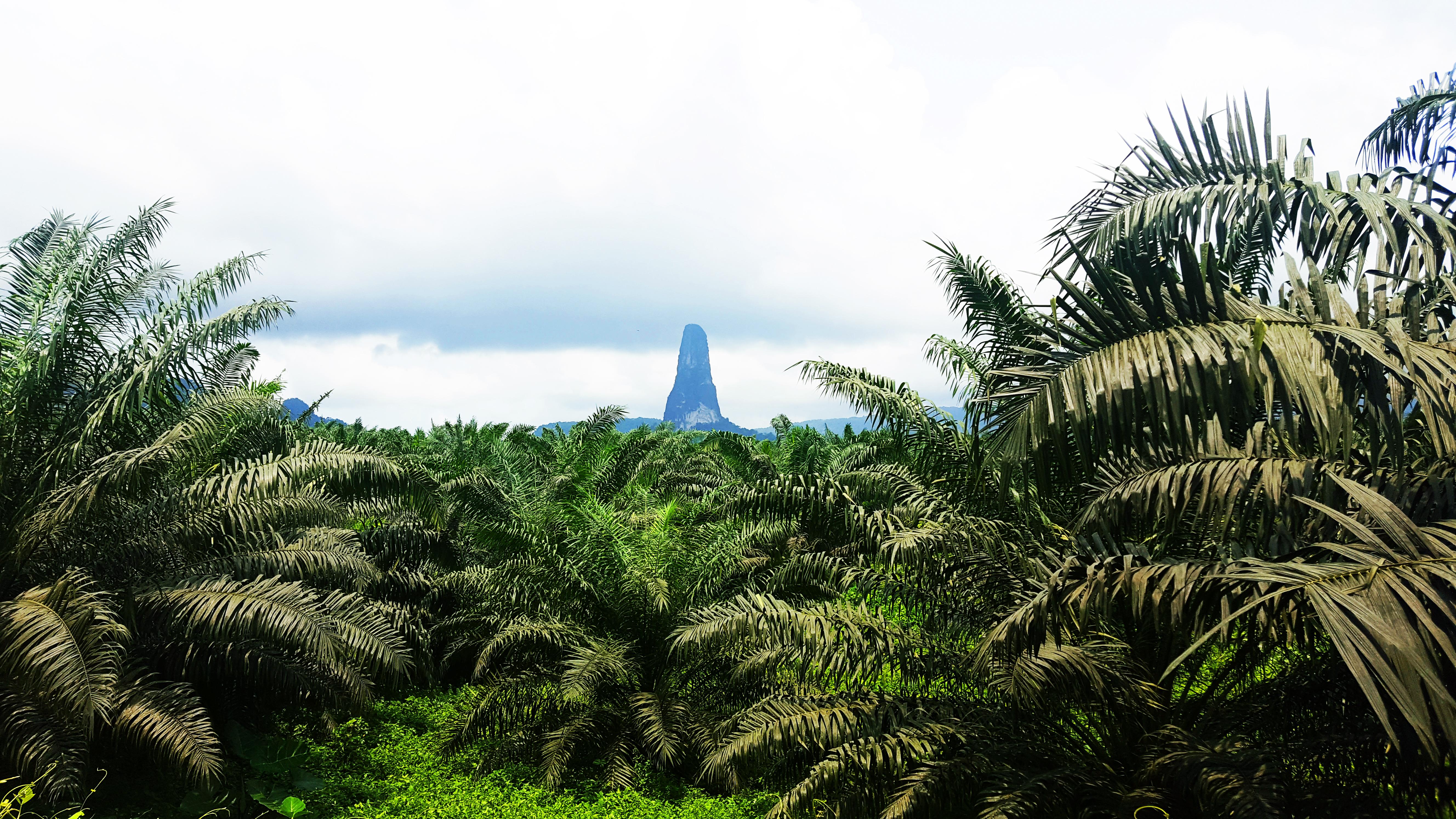 Pico Cao Grande Santo Tome and Principe_Privilege Tours
